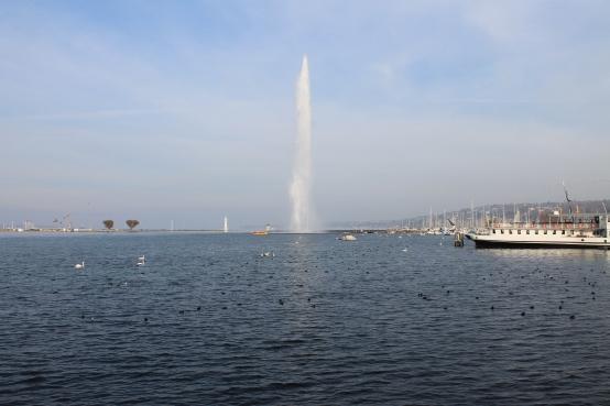 Geneva Nov 2014 002